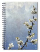 Apple Branch On A Textured Background Spiral Notebook