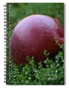 Apple Gravity Spiral Notebook