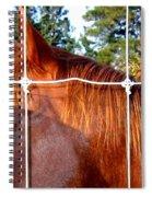 Apple Patrol Spiral Notebook