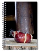 Apple Smashed With Mallet Spiral Notebook