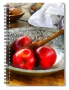 Apples In A Silver Bowl Spiral Notebook