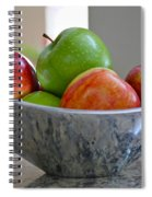 Apples In Fruit Bowl Spiral Notebook