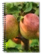 Apples Painterly Spiral Notebook