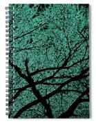 Aqua Scrub Spiral Notebook