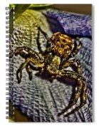 Araknophobia Spiral Notebook