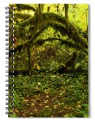 Arches In The Rainforest Spiral Notebook