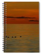 Arctic Dusk Spiral Notebook