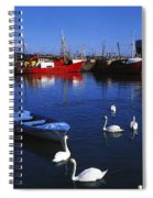 Ardglass, Co Down, Ireland Swans Near Spiral Notebook