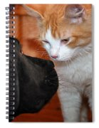 Are You Feeling Lucky Punk Spiral Notebook