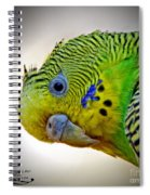 Are You Following Me Spiral Notebook