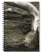 Are You Getting This Spiral Notebook
