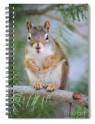 Are You Looking At Me Spiral Notebook