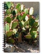 Arizona Prickly Pear Cactus Spiral Notebook