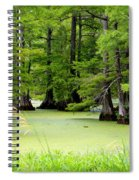 Arkansas Lake With Cypresses Spiral Notebook