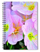 Arkansas Wildflowers Spiral Notebook
