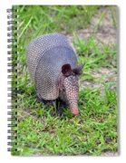 Armored Armadillo 01 Spiral Notebook
