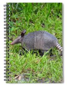 Armored Armadillo 02 Spiral Notebook