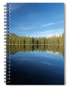 Arrowhead Reflection Spiral Notebook