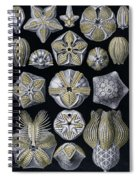 Artforms Of Nature Spiral Notebook