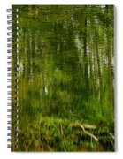 Artistic Water Reflections Spiral Notebook