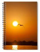 As The Gull Glides Spiral Notebook