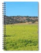 Ash Creek Valley II Spiral Notebook
