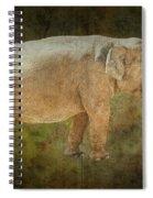 Asian Elephant Spiral Notebook