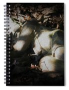 Asleep In The Leaves Spiral Notebook