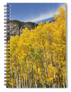 Aspen 7 Spiral Notebook