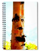 Aspen Face Spiral Notebook