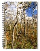 Aspen Glow Spiral Notebook