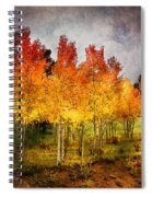 Aspen Grove In Autumn Spiral Notebook