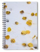 Aspen Leaves In The Snow Spiral Notebook