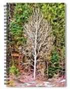 Aspen Tree On A Forest Road Spiral Notebook