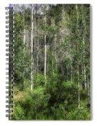 Aspen Trees - Vail Spiral Notebook