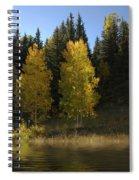 Aspen Twins Spiral Notebook