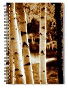 Aspens Lll Spiral Notebook