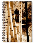 Aspens S Ll Spiral Notebook