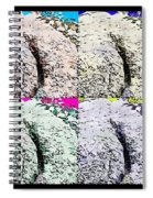 Ass Crack Rock In Quad Colors Spiral Notebook