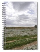 At Lachish Anemone Fields Spiral Notebook