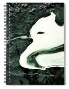 At Night I Dream Of My Beloved Spiral Notebook