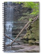 At The Falls Spiral Notebook