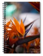 At The Flower Market Spiral Notebook