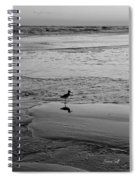 At Twilight In Black And White Spiral Notebook