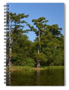 Atchafalaya Basin 41 Spiral Notebook