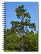 Atchafalaya Basin 42 Spiral Notebook