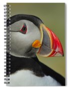 Atlantic Puffin Portrait Spiral Notebook