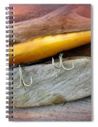 Atom A40 Vintage Saltwater Lure - Whiting Gold Spiral Notebook