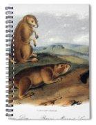 Audubon: Prairie Dog, 1844 Spiral Notebook