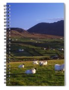 Aughrim Hill, Mourne Mountains, County Spiral Notebook